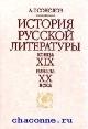История русской литературы конца XIX-начала XX века